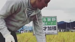 秋元才加 AKB48 京都与謝野で稲刈りして来ました。温かくおもてなしして...