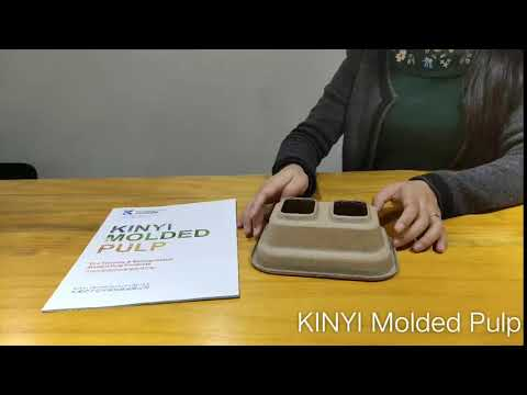 Molded Recycled Paper Pulp Tray
