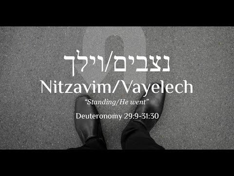 Nitzavim-Vayelech, Read Aliyah 1 - Learn Biblical Hebrew