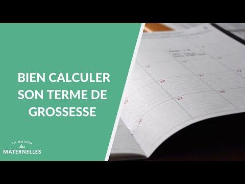 Bien Calculer Son Terme De Grossesse  - La Maison Des Maternelles #LMDM