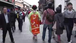 京都 本物の舞妓さんは歩くのが早い! Maiko of Kyoto Gion