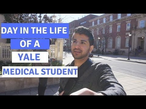 Another Day in the Life: Yale Medical School Student