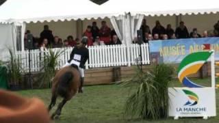 ♥ Meadow de l'Othain- jumping horse  by Kashmir Vant Schuttershof