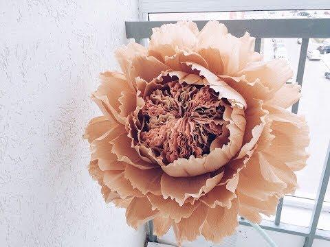 видео: Большой цветок с необычной серединкой.
