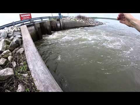 Cold Steel Blowgun Fishing World Record Gar