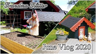 June Vlog 2020 - Garden work, the horses, some snakes and maigrains.