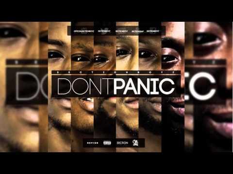 Section Boyz (Don't Panic) - T House