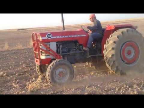 Massey Ferguson 168'lik Buğday Ekimi HD