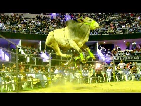 ¡¡¡ESPECTACULAR EL CAMPEÓN DEL TORNEO!! DE LOS 100,000 PESOS ACROPOLIS PUEBLA 2018