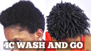 Wash and Go Short Natural 4C Hair Tutorial