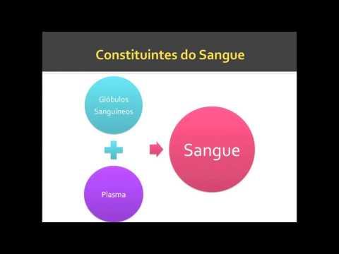 Células Sanguineas | Cèlula