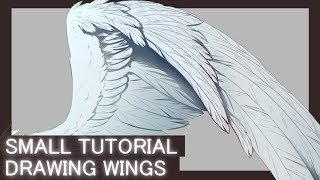 [Tutorial] How I draw wings