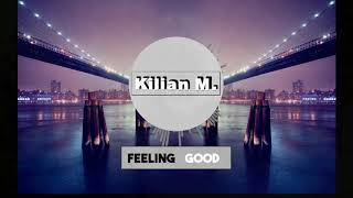 Nina Simone - Feeling Good (Kilian M. Remix) [Sleepless Off Cover]