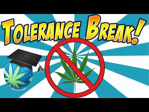 Weed Tolerance Breaks FAQ + YoCan Evolve Plus XL Review