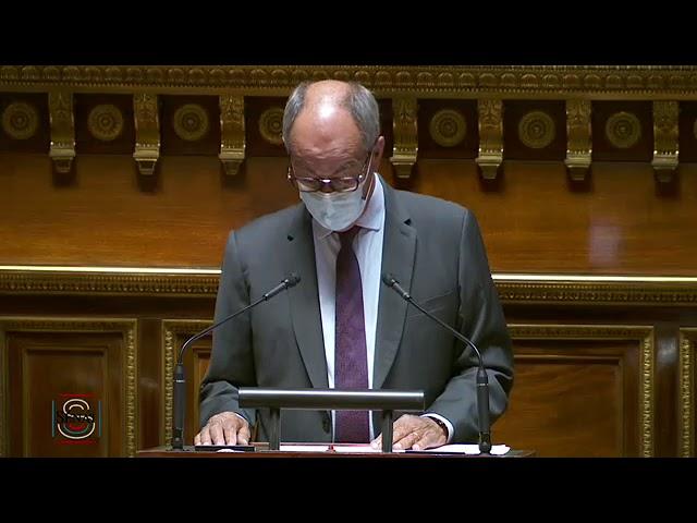 """Jean-Louis LAGOURGUE : PLF 2021 - Mission """"Travail et emploi"""""""