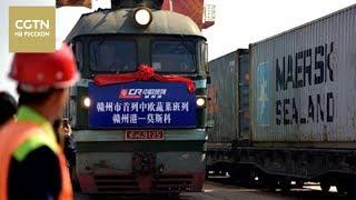 В Москву из китайского порта Ганьчжоу  отправили первый поезд с овощами[Age0+]