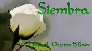 Poema SIEMBRA   Poesía de MIGUEL OTERO SILVA  Poesía recitada