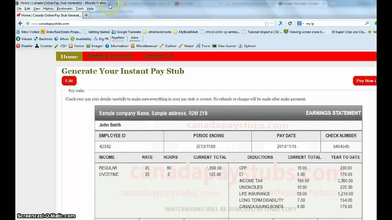 Pay Stub Format Canada – Pay Stub Format