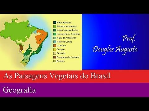 AS PAISAGENS VEGETAIS DO BRASIL