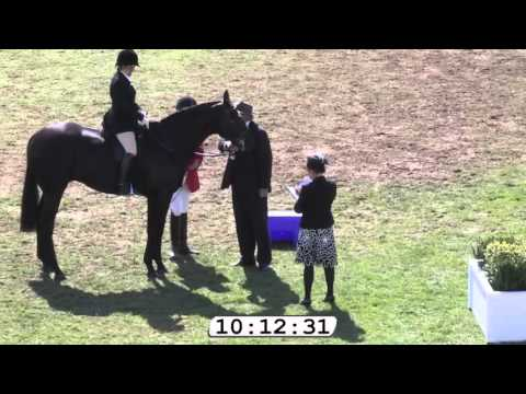 2015 Garryowen Equestrienne Turnout - 2015 Royal Melbourne Show
