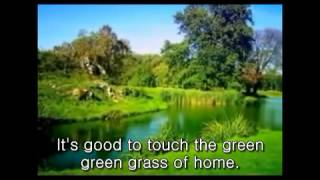 Green Green Grass Of Home - Tom Jones Cover by jw lee