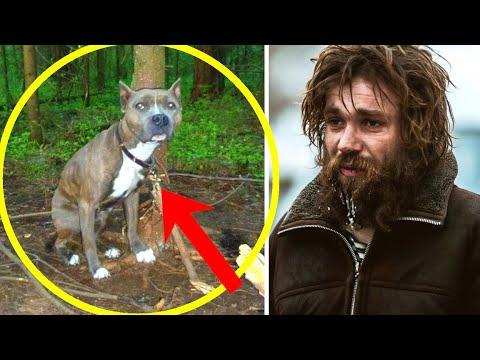 Бездомный парень нашёл в лесу привязанного к дереву пса и освободил его. И вот что было дальше...