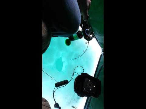 Ice fishing MONSTER lake trout Fingerlakes Ny