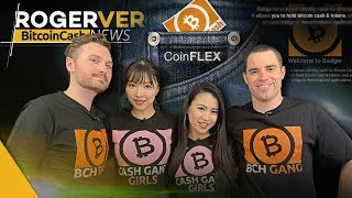 Bitcoin Cash Token Wallets Have Arrived! 1 CENT Average Transaction Fees 😱& More Bitcoin Cash News