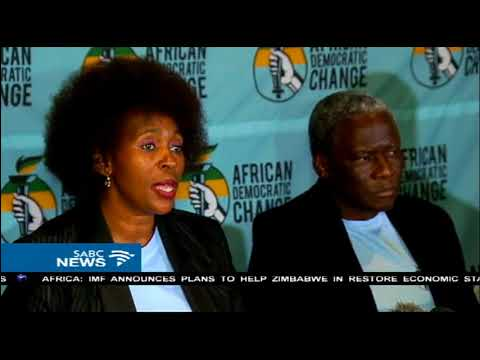 Makhosi Khoza adamant her new party will not collapse