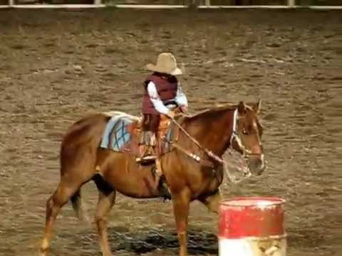 Cody Stampede Rodeo Barrel Racing Kid Youtube