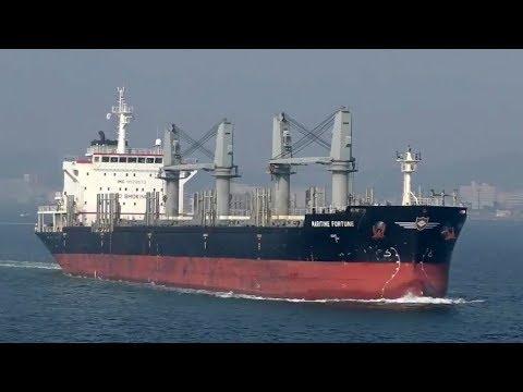 MARITIME FORTUNE - IMC SHIPPING bulk carrier