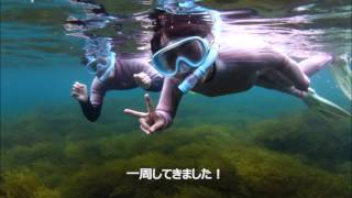 izu travel 工藤友美 検索動画 12