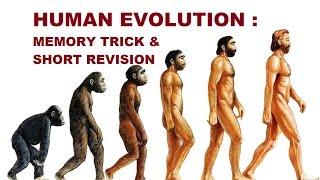 Origin and Evolution of Human ; MEMORY TRICK SERIES for NEET/AIIMS - VIDEO 2