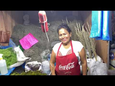 Ambiente Dominical De La Feria Sahuayo 2019