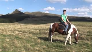 Equitation en Auvergne
