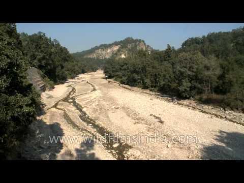 Seasonal stream passing through Rajaji National Park