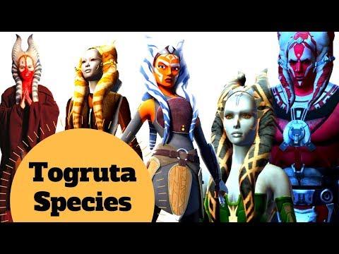 Shaak Ti, Ahsoka Tano & More! - Togruta Species Explained - Star Wars Alien Species & Creatures Lore