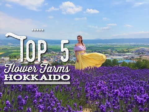 TOP 5 Flower Farms in HOKKAIDO to Visit in Summer | JAPAN | Come Away With Me by Bianca Valerio