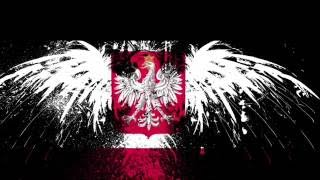 ШОК! Сколько можно заработать в Польше? Стоит ли ехать? Зарплата в Польше.  Работа в Польше