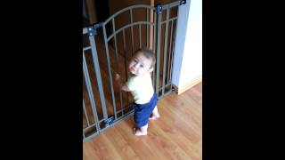 Jacob Making Sure The Baby Gate Is Secure