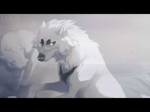 Anime Wolves~ On My Own