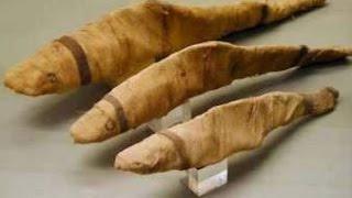 بالفيديو.. المصريون القدماء لديهم 60 عيدًا في العام