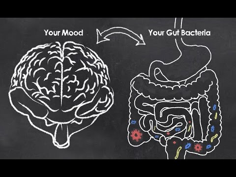 [Webinar Replay] Mental Health & Microbes: Can Your Gut Bacteria Affect Your Mood?