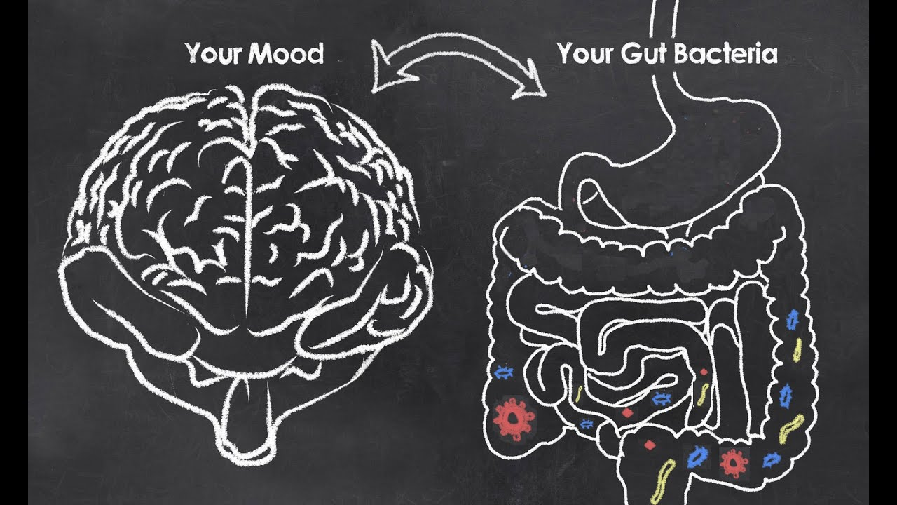 Can Bacteria In Your Gut Explain Your >> Mental Health Microbes Can Your Gut Bacteria Affect Your Mood