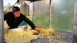 For Sale KettleCorn Trailer  $8,900 OBO