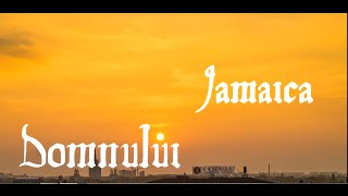 The Purple Dandies - Jamaica [Lyric Video]