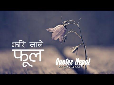 Nepali Heart Touching Message Nepali Quotes मन छ न