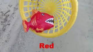 Learn Colors Sea Animals Names For Kids Ocean Water Toys For Children Educational Learning Videos #D
