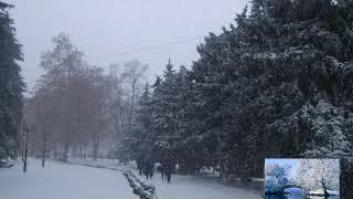 ПРИРОДА!-ЗИМА-2019 год-ЯНВАРЬ-Заметает Зима-Заметает.