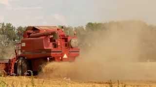 Pełna Moc 2014 - Śrut z tłumika & 2x Case Axial Flow 2188